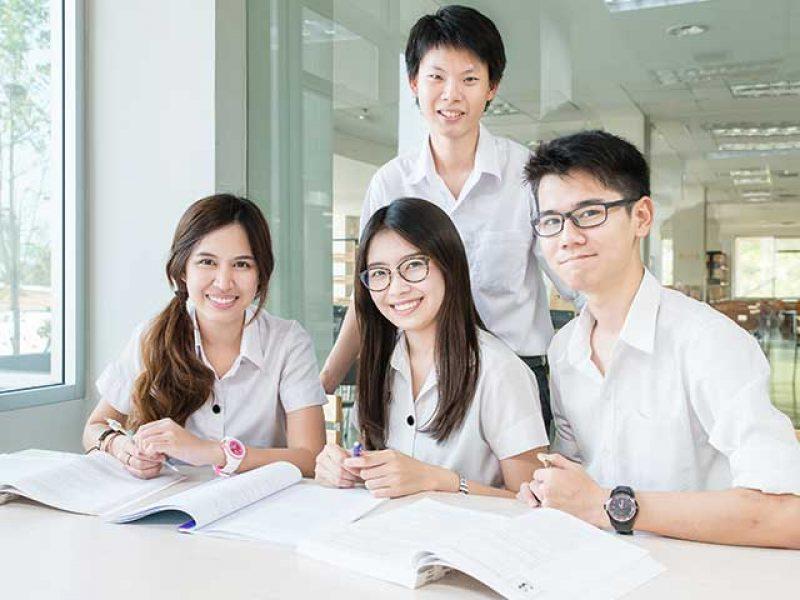 Hệ thống giáo dục từ mẫu giáo đến đại học