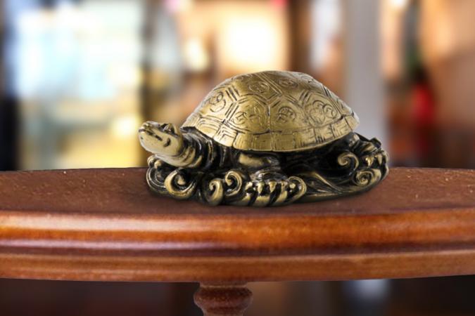 Rùa không hề chậm chạp khi thống trị các huyền thoại sáng tạo quan trọng và truyền thuyết thay đổi cuộc sống của sự may mắn.