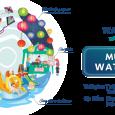 Tưng bừng mùa lễ hội Waterpoint Nam Long cuối năm 2019