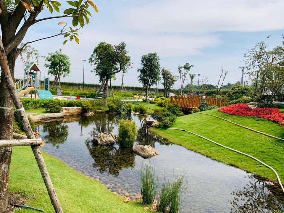 Nhà mẫu nhà phố vườn