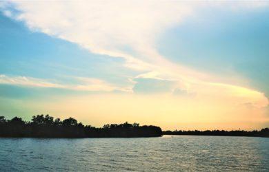 Vẻ đẹp tự nhiên say lòng người của dòng sông Vàm Cỏ Đông.